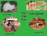 2006 4-H FAIR