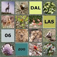 Dallas Zoo 2006