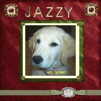 Jazzy11
