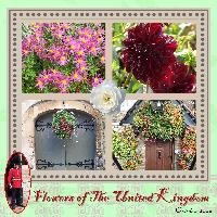 Flowers of the UK