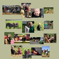 Farm Life Festival