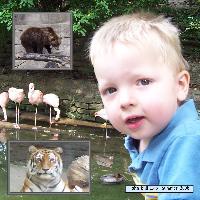 John Ball Zoo- summer 2006