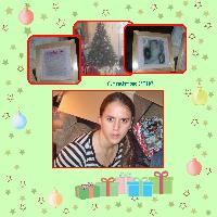 Christmas 2006 Holly