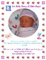 Welcome to the World Little Angel!