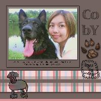 Coby, my German Shepherd Dog