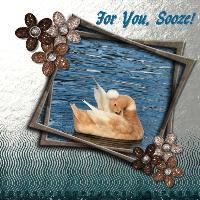 For Sooze