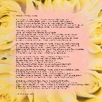 Drunk Driving Poem