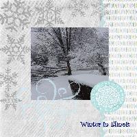 Winter in Illinois