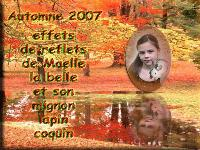 automne maelle