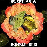 CUTE AS A BUMBLE BEE