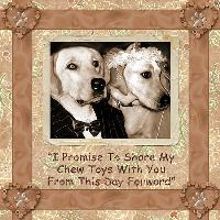 I Promise To Share My Chew Toys...