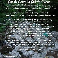 sarah stout