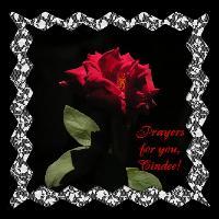 Prayers For Cindee