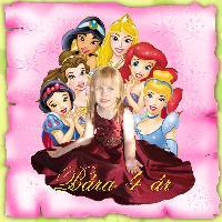 Bára's birthdaycake