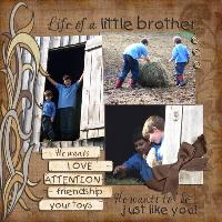 Life of a Little Brother
