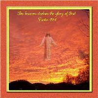 Heavens Declare The Glory