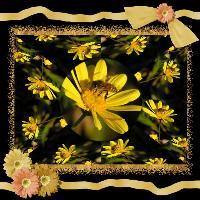 Yellow Kaleidescope