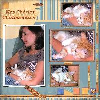kitty ma chatounette,my pet,