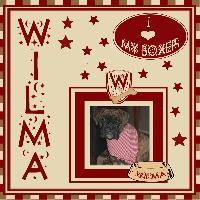 My sweet boxer girl
