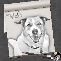 My Vali
