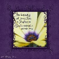 Frame, Flower, Word Art Challenge