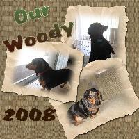 Woody Our Dog