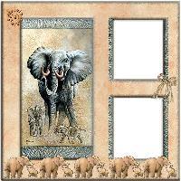 QP Elephant 1