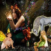 fairies,fairies,fairies
