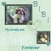 Bibi my lovely pet