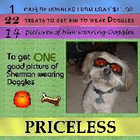 Sherman's Goggles