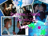 CSI.GSR.The puzzle of love