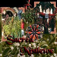 Sacred Misletoe - Druids