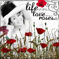 Life, Love, Roses