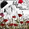 Life, Love, Roses