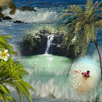 Tropical Vaction