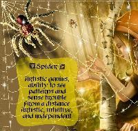 Animal Spirit-Spider