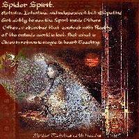 my animal spirit Spider