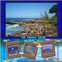 THE PACIFIC OCEAN HAWAIIAN STYLE