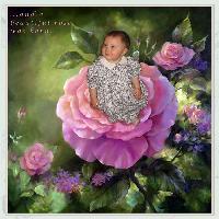 Emily, My little rose!