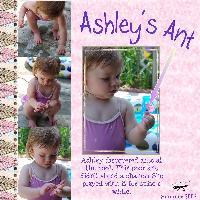 Ashley's Ant