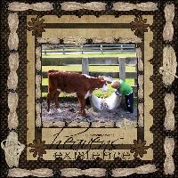 Damon & the Calf