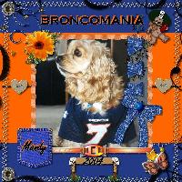Broncomania-Mandy's Favorite Team