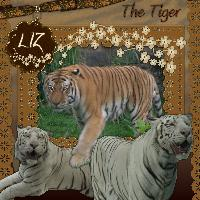 The Tiger (Revision for Liz)