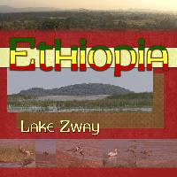 Lake Zway, Ethiopia
