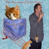 pocket kitty's