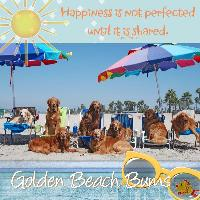 Golden Beach Bums