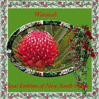 My State Flower
