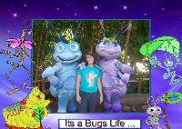 its a buggy life