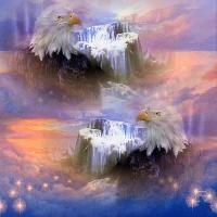 Fantasy Eagles
