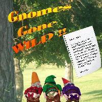 Gnomes Gone WILD!!